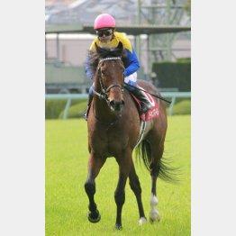 昨年の勝ち馬ユーキャンスマイルは武豊とのコンビ