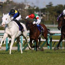 【桜花賞】ソダシが5戦無敗で桜花賞馬に