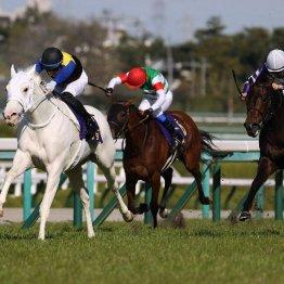 【桜花賞】着差はわずかでも完勝ソダシ 過去3年の勝ち馬に劣らない無限の可能性