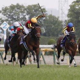 【NHKマイルC】シュネルマイスターが1分31秒6の好時計でGⅠ制覇