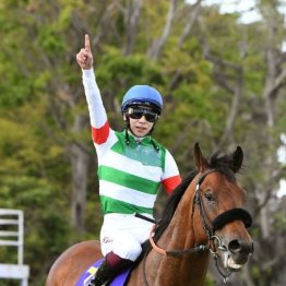 NHKマイル馬、皐月賞馬、桜花賞馬の共通点とは