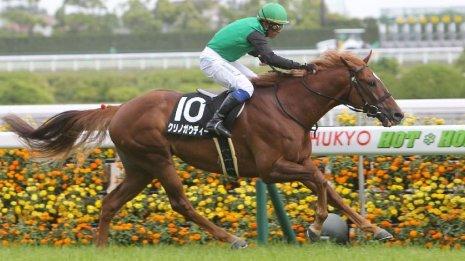 【鞍馬S】クリノガウディーGⅠ1位入線→降着の舞台で待望の2勝目