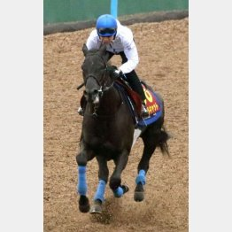 クールキャットは馬なりで1F12秒1