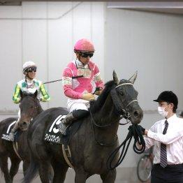 【勝羽の日曜競馬コラム・大垣S】