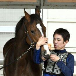 【大谷の日曜競馬コラム・オークス】