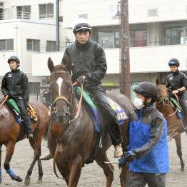 【亀井の日曜競馬コラム・安田記念】