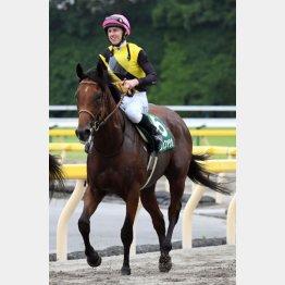 昨年の勝ち馬カフェファラオは今年、フェブラリーS馬に