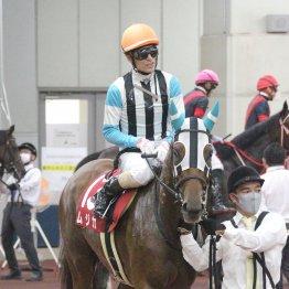 【播磨の日曜競馬コラム・垂水S】