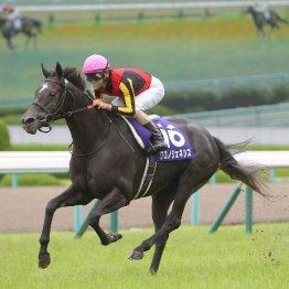 【宝塚記念】近年は牝馬優勢