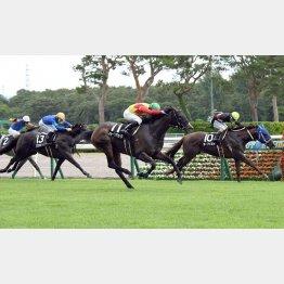 初日の2勝クラス、豊栄特別は関西馬が④着まで独占