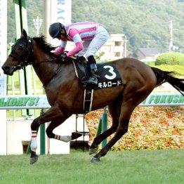 福島の日曜メインと9Rの勝ち馬は次も