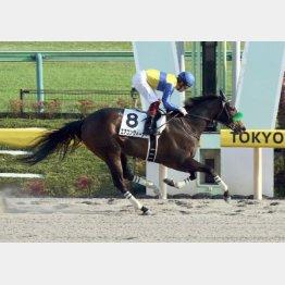 昨年5月には福永で2勝クラス勝ち