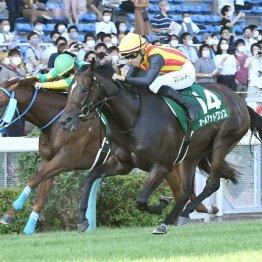 【アイビスサマーダッシュ】3歳牝馬オールアットワンスが抜け出して重賞初制覇