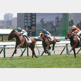 昨年、札幌二千の新馬戦からはエフフォーリアが