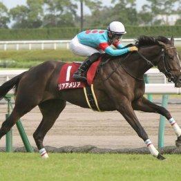 【ローズS】好成績のオークス組に夏の上がり馬にも注目