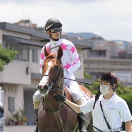 【勝羽の土曜競馬コラム・野路菊S】