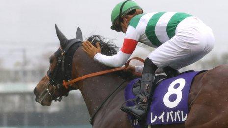 【オールカマー】◎レイパパレ○グローリーヴェイズ気持ち的にワイド100%馬連80%