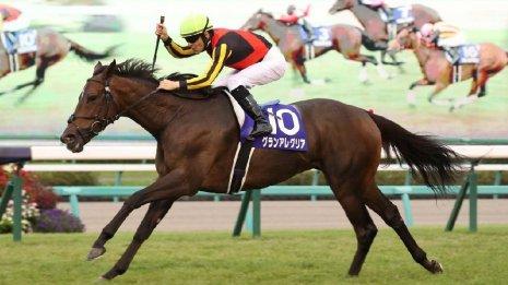 【スプリンターズS】王者ダノンスマッシュVS牝馬2頭