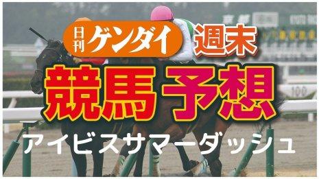 第20回アイビスサマーダッシュ(7/26・新潟11レース・GⅢ)