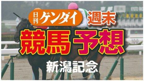 第56回 新潟記念(9/6・新潟11レース・GⅢ)