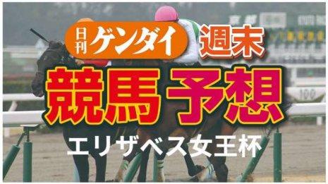 第45回エリザベス女王杯(11/15 ・阪神11レース・GⅠ)