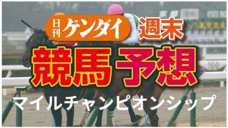 第37回マイルCS(11/22 ・阪神11レース・GⅠ)