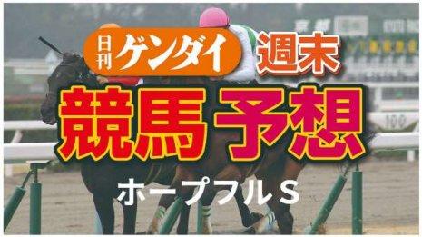 第37回ホープフルS(12/26・中山11レース・GⅠ)